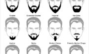 20 different style beards for men